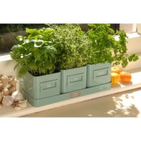 indoor herb pots | Inside | Pinterest | Herb pots, Kitchen ...