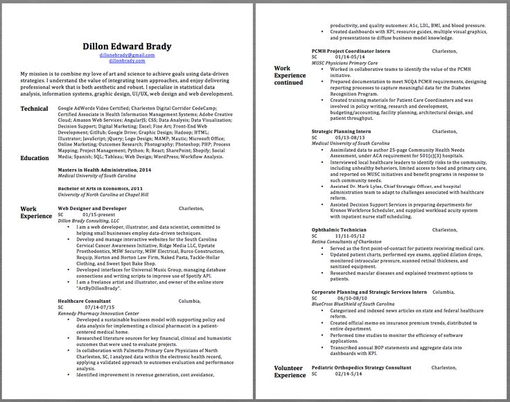 25+ Best Ideas about Professional Resume Samples on