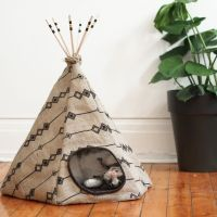 25+ best ideas about Cat Tent on Pinterest | Diy cat tent ...