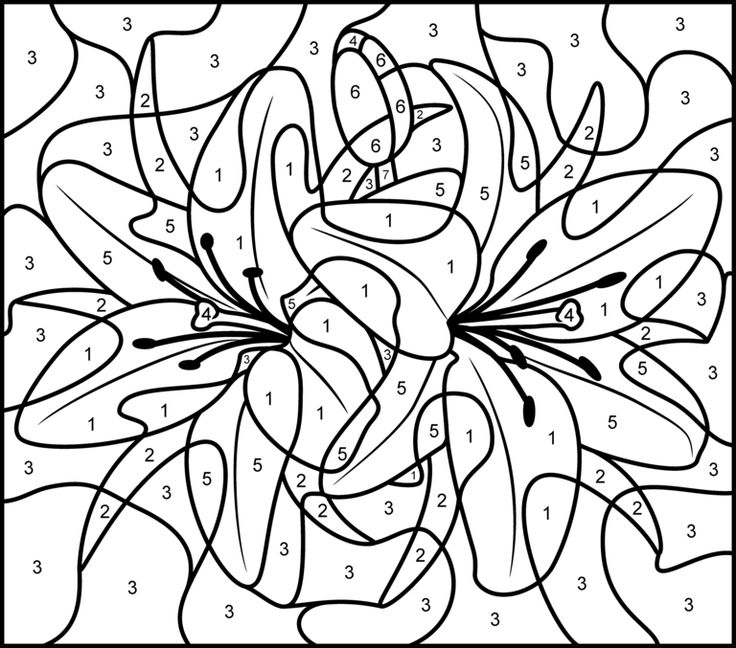 162 best images about color by number and dot to dot on