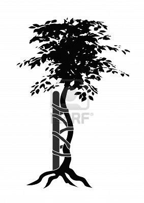 orthopedic surgery crooked tree symbol  Orthopaedics Crap