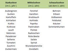 Tabelle Hochbeet Bepflanzen Gemuse Krauter Starkzehrer Schwachzehrer Mittelzehrer Einteilung