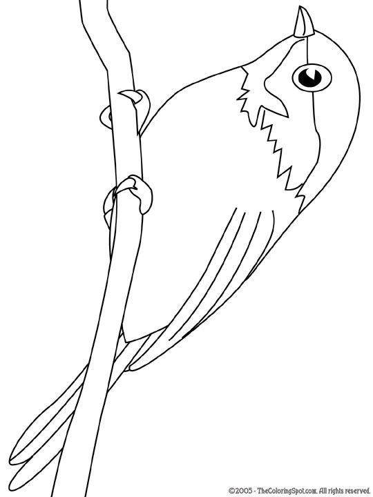 Kleurplaat Kleurplaat Vogels 3751