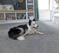 17 Best images about Carpet on Pinterest   Carpet styles ...