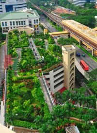 8 best images about hdb gardening on Pinterest | Gardens ...