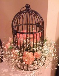 25+ best ideas about Bird cage decoration on Pinterest ...
