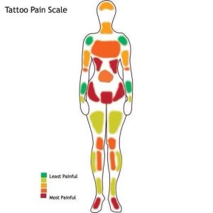 25 best ideas about Tattoo pain chart on Pinterest
