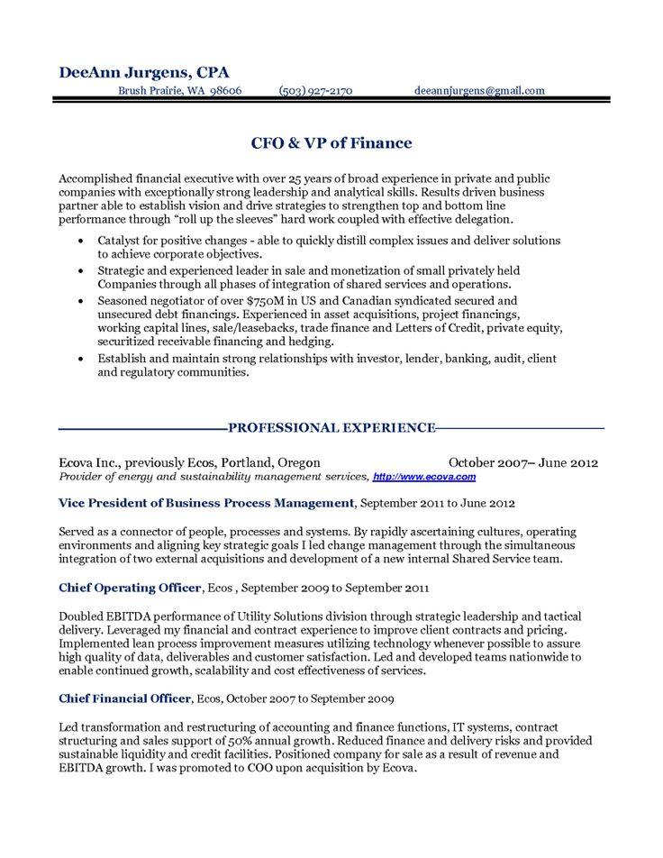 12 CFO Resume Objective Riez Sample Resumes Riez