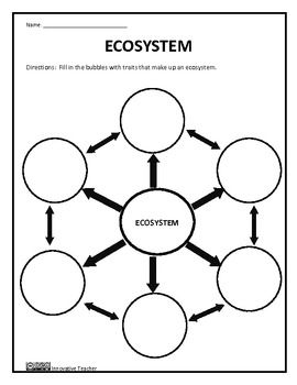 1000+ ideas about Ecosystems 4th Grade on Pinterest