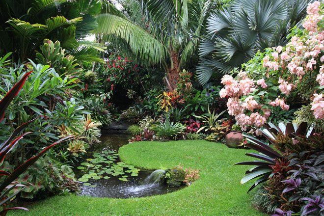 78 Ideas About Tropical Garden Design On Pinterest Tropical