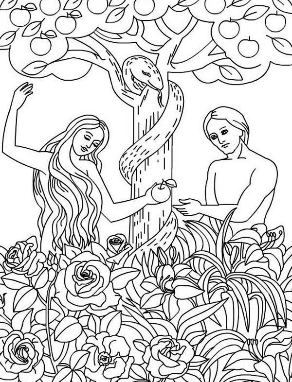 Adam-and-Eve-Disobey-God-Command-Coloring-Page.jpg (600
