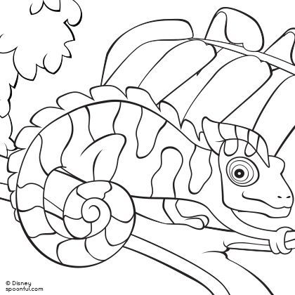 17 Best images about Reptiles, Lizards & Amphibians Unit