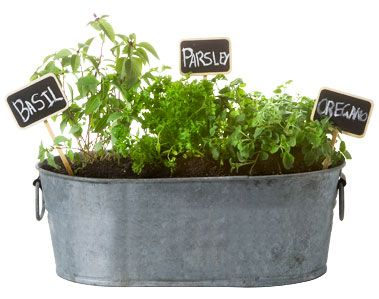 25 Best Ideas About Small Herb Gardens On Pinterest Kitchen