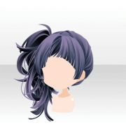 1000 ideas side ponytail