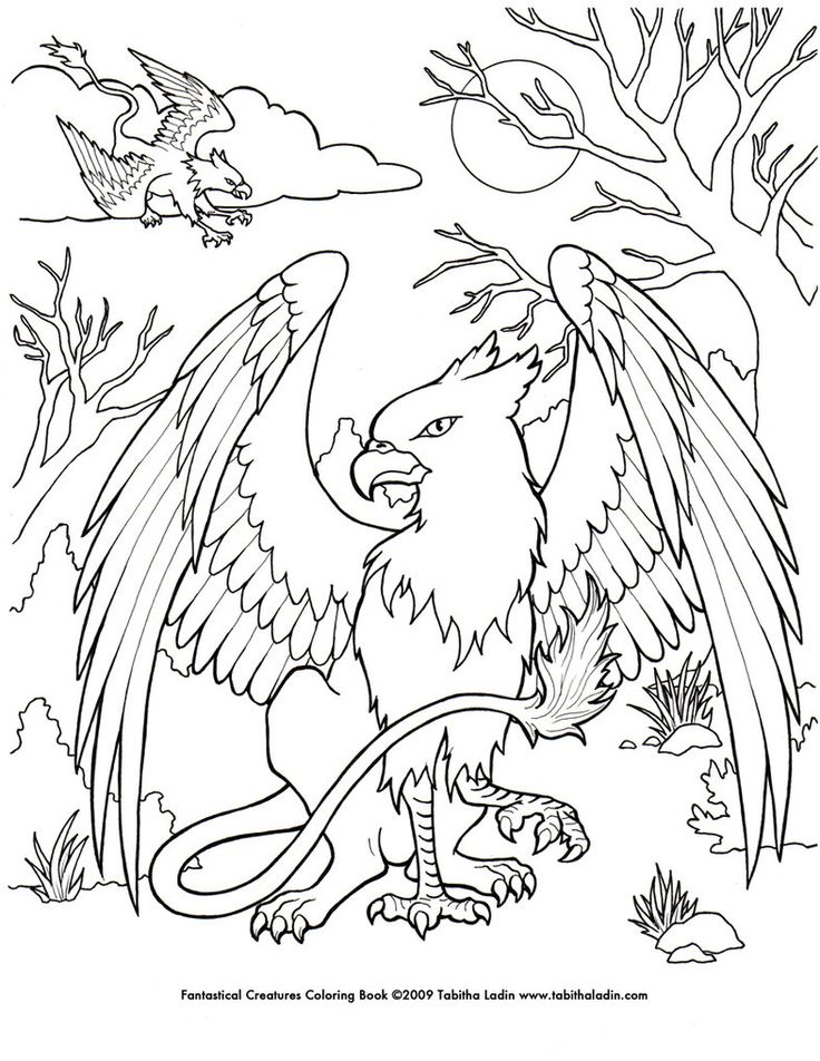 17 Best ideas about Dover Coloring Pages on Pinterest