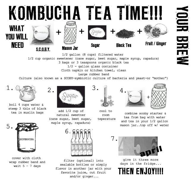 Kombucha tea (KT): Recipe – How to – Ideas