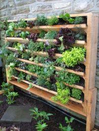 17+ best ideas about Vertical Gardens on Pinterest ...