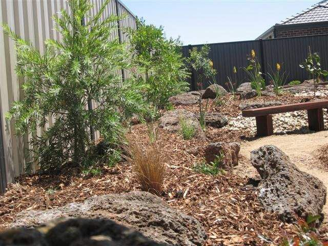 1000 Images About Native Garden Ideas On Pinterest Gardens