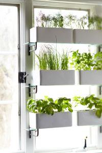 Best 20+ Window Privacy ideas on Pinterest   Diy window ...