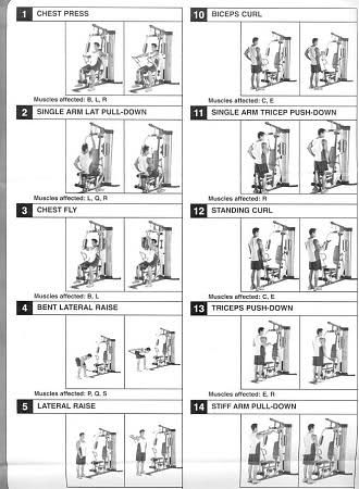 25+ best ideas about Gym workout chart on Pinterest