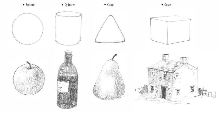 Top tips for learning to draw with Linda Birch. From four