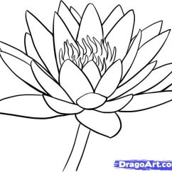 Lily Diagram Printable Weed Eater Carburetor Lotus Flower Drawing | How To Draw A Water Step 9 Handmade Greeting Cards Pinterest ...