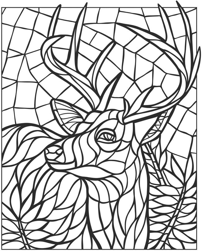 Welcome to Dover Publications Creative Haven Animal