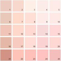25+ best ideas about Benjamin Moore Pink on Pinterest ...