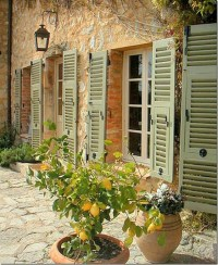20 best images about French Inspired backyard on Pinterest
