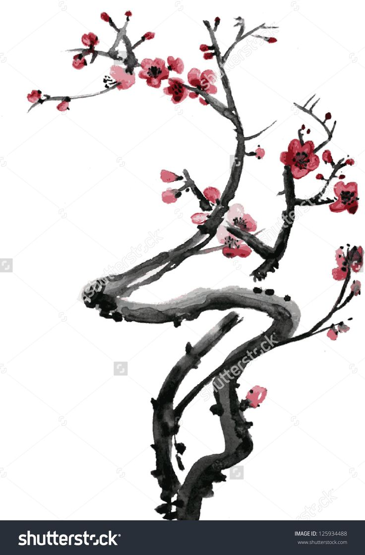 Falling Cherry Blossom Wallpaper Hd Japanese Ink Drawing Blossom Google Zoeken Sakura