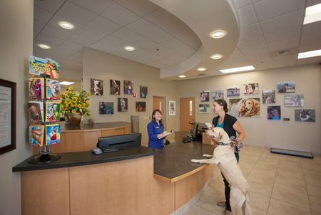 2014 Veterinary Hospital Of The Year Fostering A Family