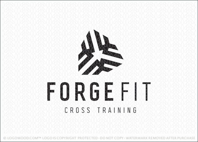 60 best images about Functional Training Zone on Pinterest