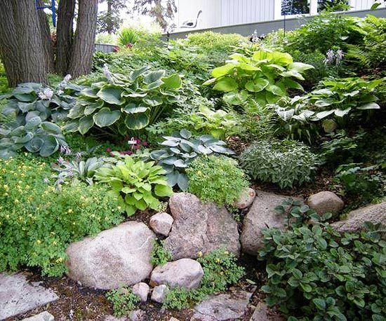 The 25 Best Images About Hillside Rock Garden On Pinterest