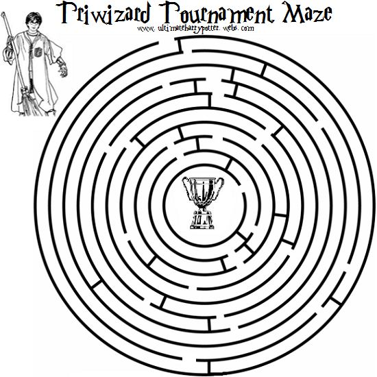 the Third Task was to navigate a maze grown on the
