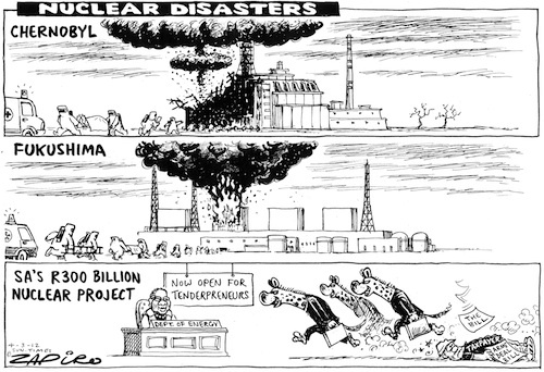 106 best images about Zapiro on Pinterest