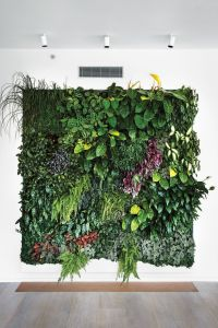 25+ best ideas about Plant wall on Pinterest | Wall ...