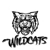 22 best images about North Fulton Wildcats on Pinterest