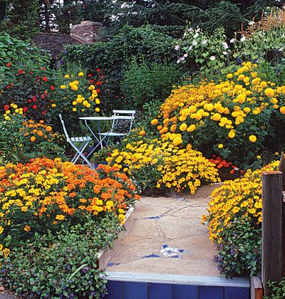 214 Best Images About Flower Garden Ideas On Pinterest Gardens