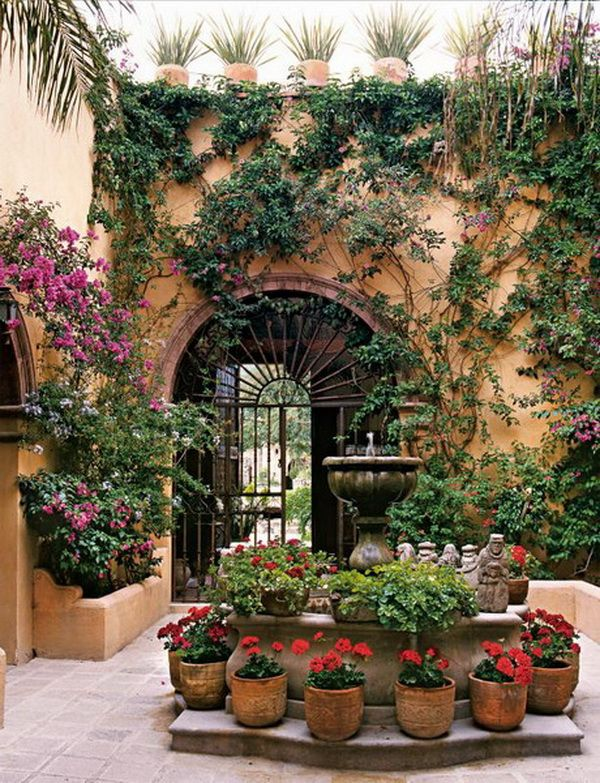 25 Best Ideas About Mexican Garden On Pinterest Mexican Colors