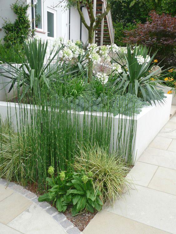 25 Best Garden Ideas Uk On Pinterest Formal Gardens House With