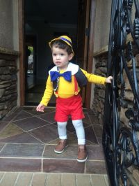 25+ best ideas about Toddler Boy Halloween Costumes on ...