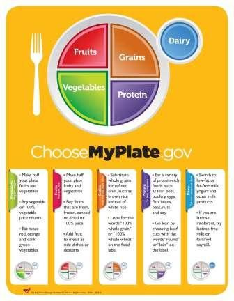 healthy plate diagram 2002 chevy venture radio wiring detailed myplate   teaching: living pinterest portion sizes, the all and o'jays