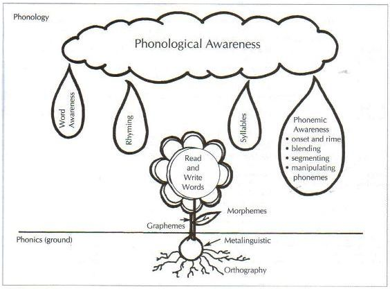 63 best images about phonological awareness on Pinterest