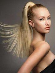 1000 ideas long hair ponytail