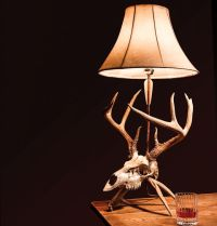 Project: How to Make Your own Euro Skull Lamp | Field ...