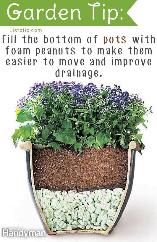25 Best Ideas About Garden Pots On Pinterest Potted Plants