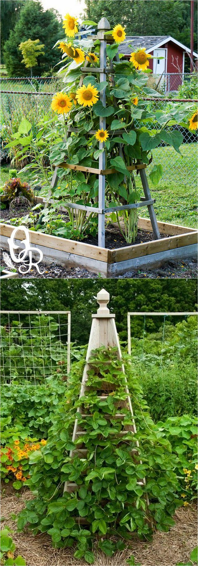 25 Best Ideas About Garden Structures On Pinterest Gazebo