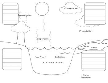 Water Cycle Flip-able Diagram for Interactive Notebook
