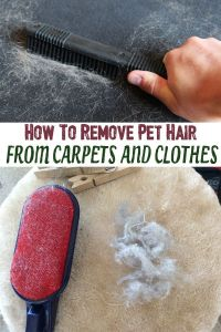 carpet pet hair removal products carpet pet hair removal ...
