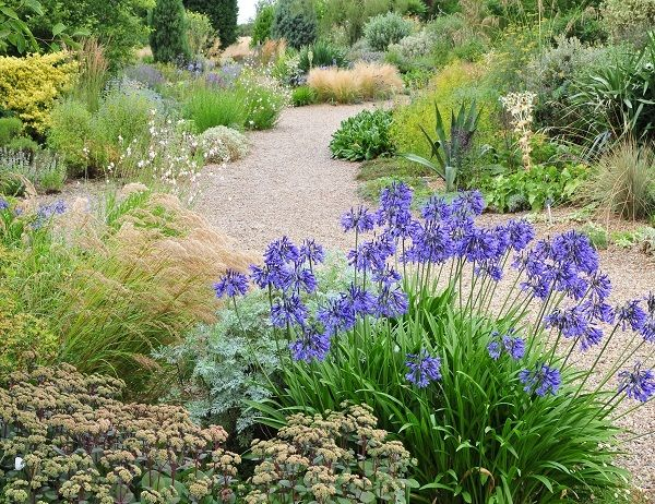 25 Best Ideas About Gravel Garden On Pinterest Landscape